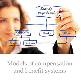 Models of compensation and benefit systems